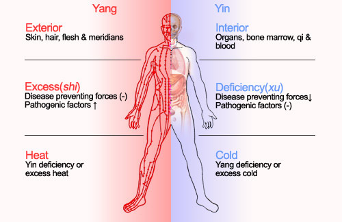 TCM PRINCIPLES/DIAGNOSTIC METHODS
